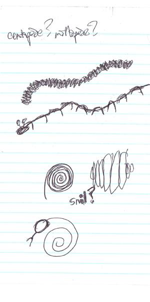 metalturtle_sketch_5_small.jpg